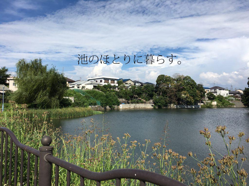IMG_7582のコピー